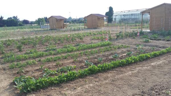 Jardins_familliaux_Avrainville_Juillet2015_2-2.jpg